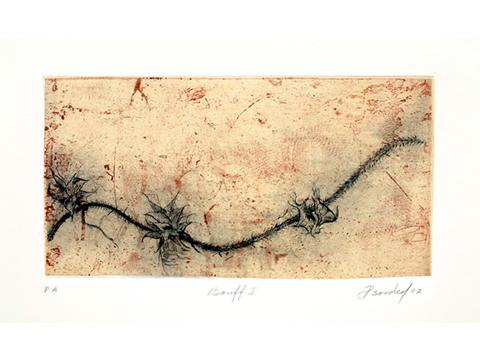 Pilar Bordes, Obra, Banff, Arte Hoy, Galería