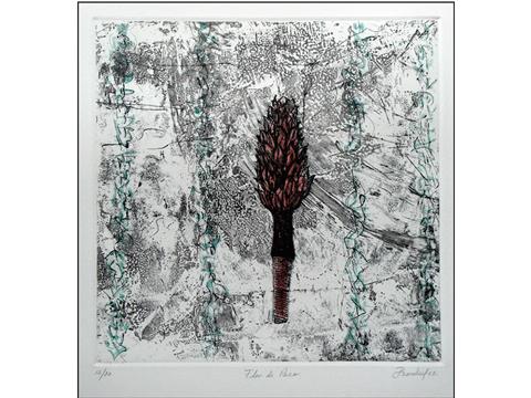 Pilar Bordes, Obra, Flor, Paco, Arte Hoy, Galería