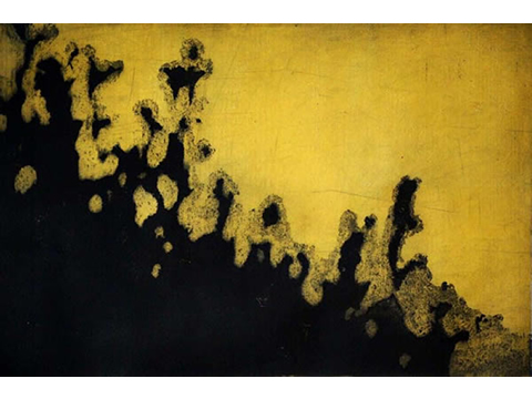 Renata Gerlero, Obra, Bosque I, Arte Hoy, Galería