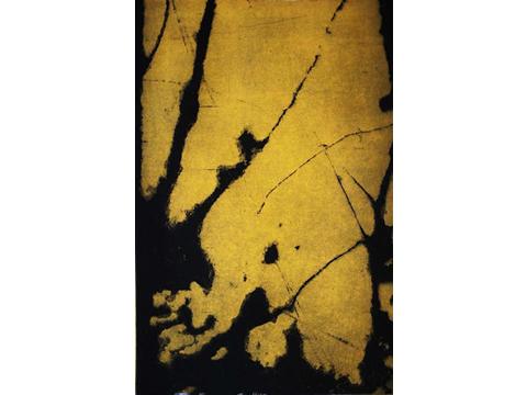 Renata Gerlero, Obra, Bosque II, Arte Hoy, Galería