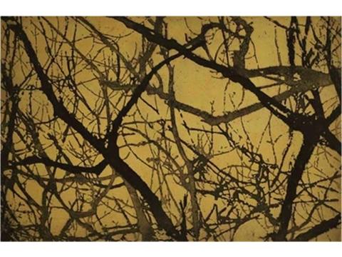 Renata Gerlero, Obra, Bosque IV, Arte Hoy, Galería