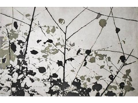 Renata Gerlero, Obra, Contraluz IV, Arte Hoy, Galería