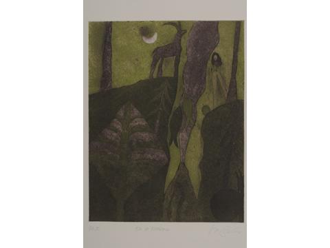 Roger von Gunten, Obra, barranca, Arte Hoy, Galería