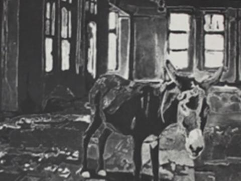 Sergio Ricaño, Obra, Burro, Arte Hoy, Galería