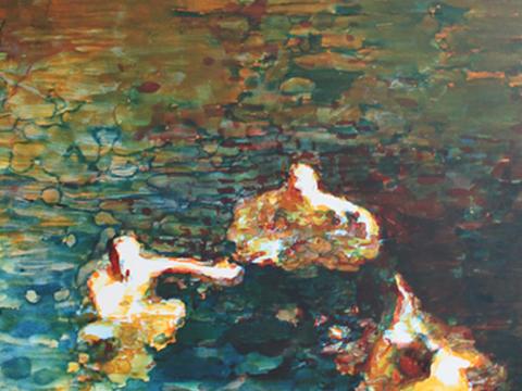Sergio Ricaño, Obra, sin título, Arte Hoy, Galería