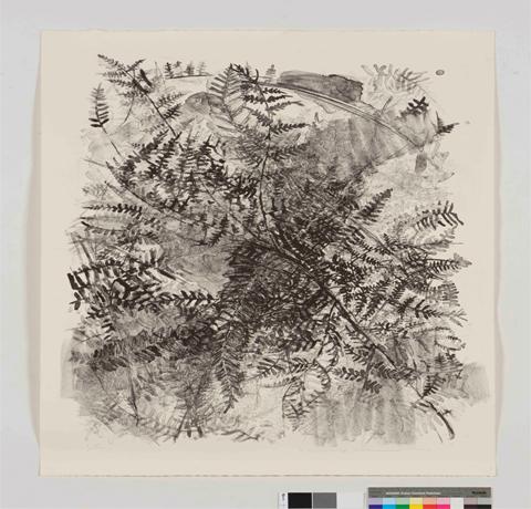 Yuko Sasai, Obra, Planta III, Arte Hoy, Galería