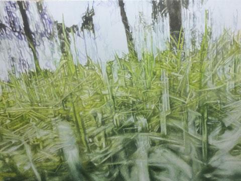 Claudia Gallegos, Obra, Bosque agua, Arte Hoy, Galería